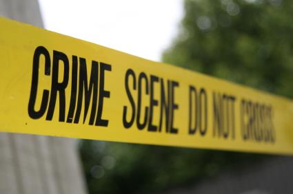 <img:http://pointersviewpoint.files.wordpress.com/2010/08/crime.jpg>